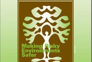 Making Risky Environments Safer