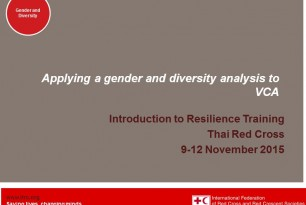 Gender and diversity-sensitive approach to VCA tools