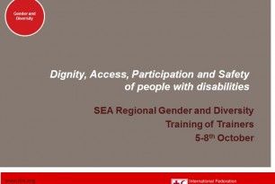 Dignity, Access, Participation and Safety of people with disabilities