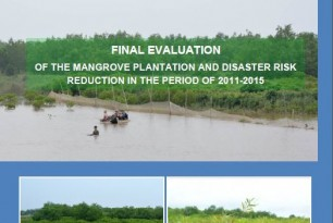 Final Evaluation of the Mangrove Plantation and Disaster Risk Reduction in the Period of 2011-2015