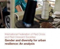 Gender and diversity for urban resilience: An analysis