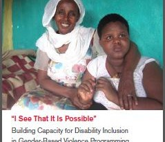 """I see that it is Possible"" Building Capacity for Disability Inclusion in Gender-Based Violence Programming in Humanitarian Settings"