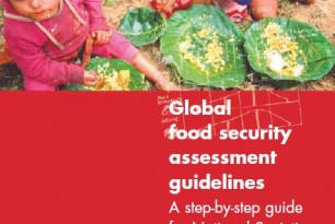 Global food security assessment guidelines – A step-by-step guide for National Societies