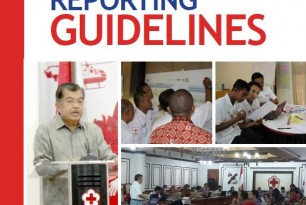 PMI Planning and Reporting Guidelines