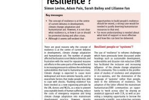 "The Relevance of Resilience?"", The Humanitarian Policy Group (HPG), HPG Policy Brief 49, September 2012. Written by Simon Levine, Adam   Pain, Sarah Bailey and Lilianne Fan – External References"