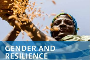Gender and Resilience. Working Paper