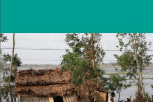 Health and Disaster Risk Reduction | Policy | Merlin | February 2009 – External References