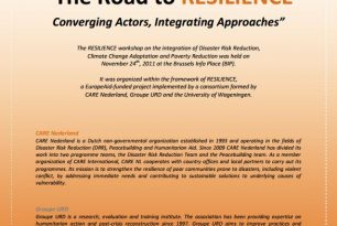 The Road to Resilience: Converging Actors, Integrating Approaches – External References