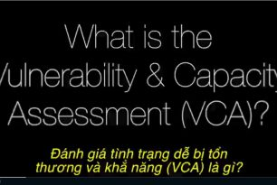 Gender and Diversity Sensitive Vulnerability and Capacity Assessment (VCA)