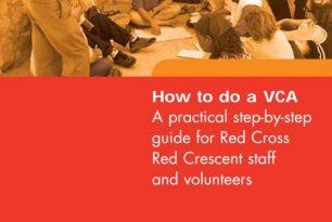 How to do a VCA? (2007)
