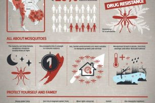 Malaria infographic A3 poster covering: – Malaria in Southeast Asia – All about mosquitoes – Protect yourself and family – Epidemic Control for Volunteers (ECV)