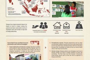Dengue – a silent disaster poster – Epidemic Control for Volunteers (ECV)