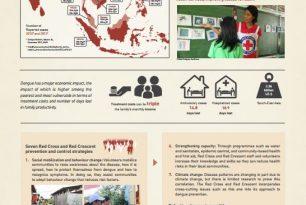 Dengue – a silent disaster poster – Epidemic Control for Volunteers (ECV)