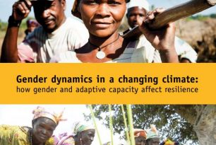 Gender dynamics in a changing climate: how gender and adaptive capacity affect resilience