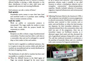 Cash and voucher in relief and recovery: Red Cross Red Crescent good practices