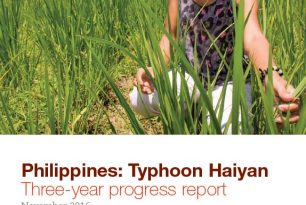 Philippines: Typhoon Haiyan Three-year progress report (November 2016)