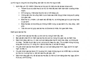Basic Training Guide in Viet Nam IG-3 Supplementary Information-VN.doc