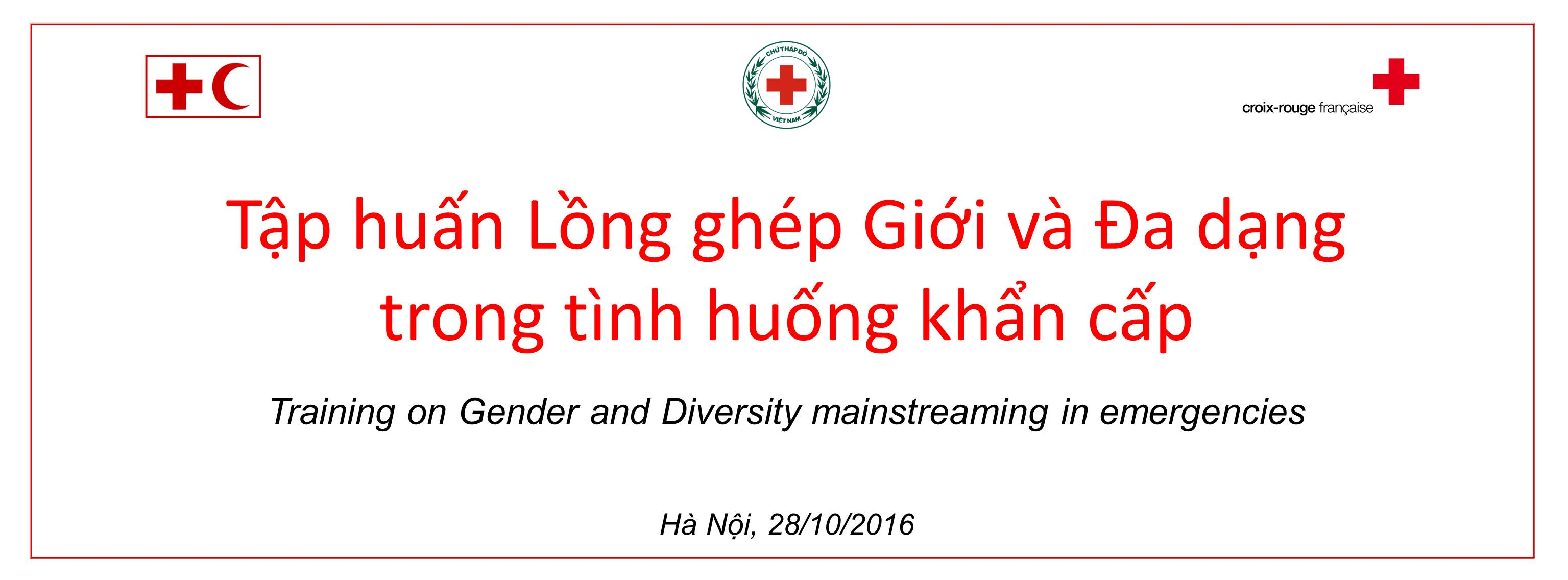 Gender and Diversity Mainstreaming in Emergencies 2016 backdrop